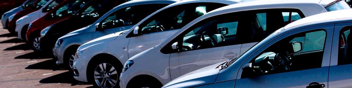 ¿Influye la Devaluación en tu Seguro de Auto?