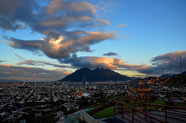 Licencia de Conducir Monterrey